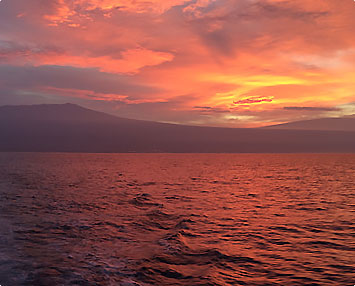 Kona Fishing Family Friendly-