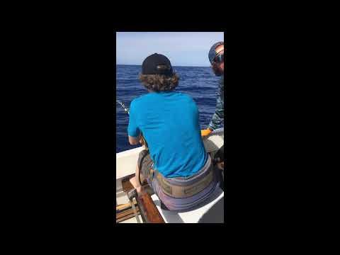 500lb Marlin (Highlight Montage)