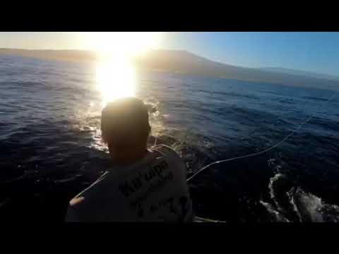 Camelot Sport Fishing - Kona Hawaii